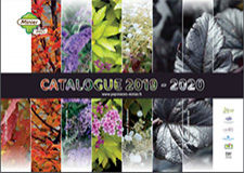 Catalogue Minier Solutions Pro 2019